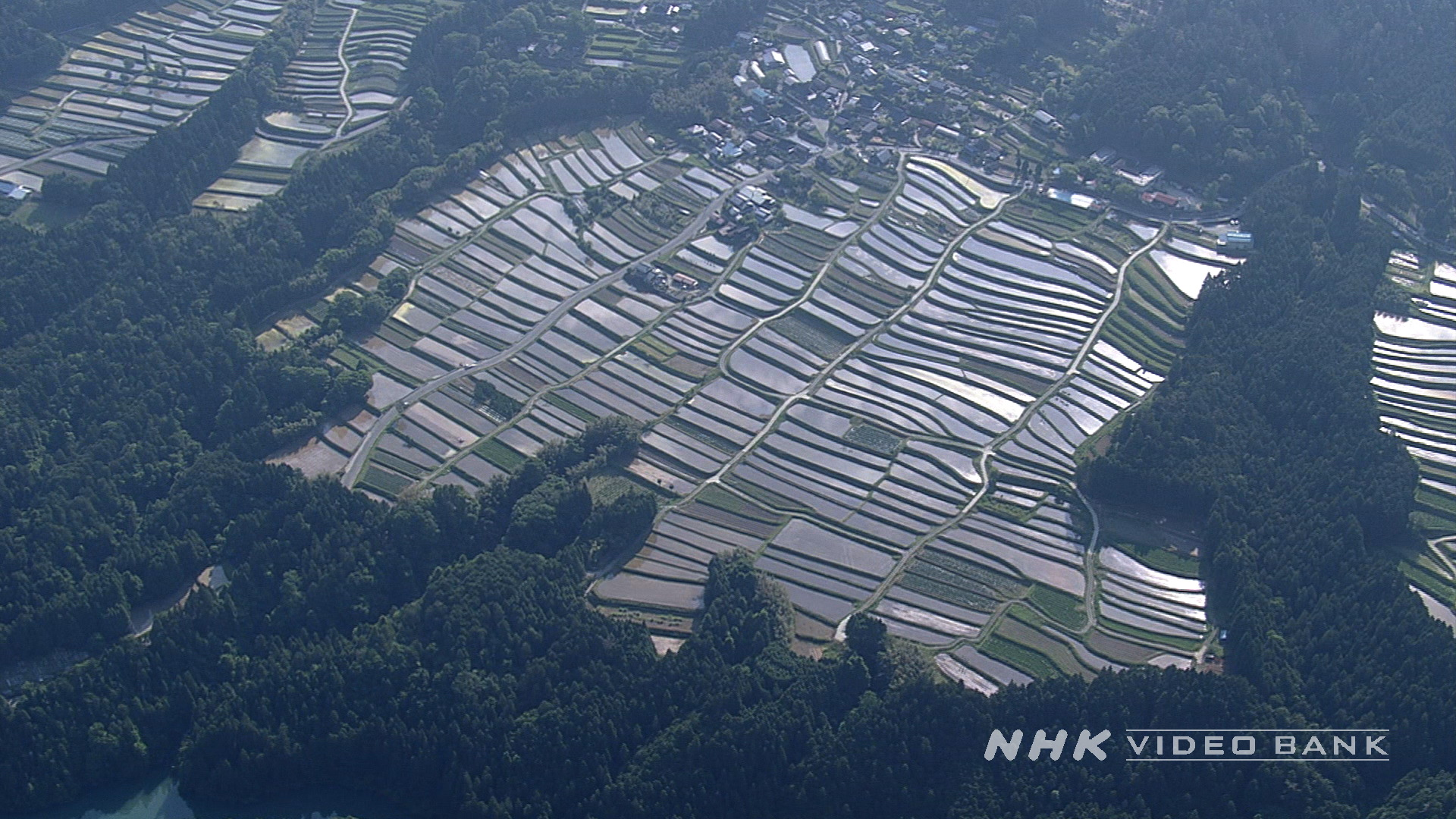 Aerial: terraced rice paddies in Kyoto