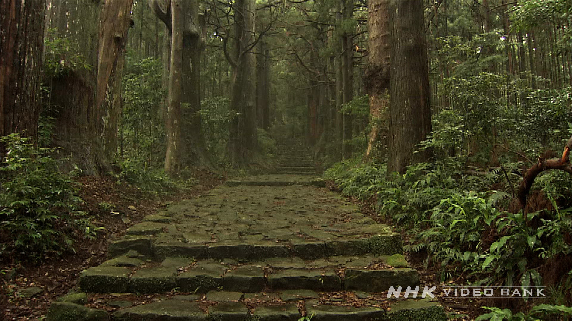 UNESCO World Heritage: Kumano Kodo Pilgrimage Routes