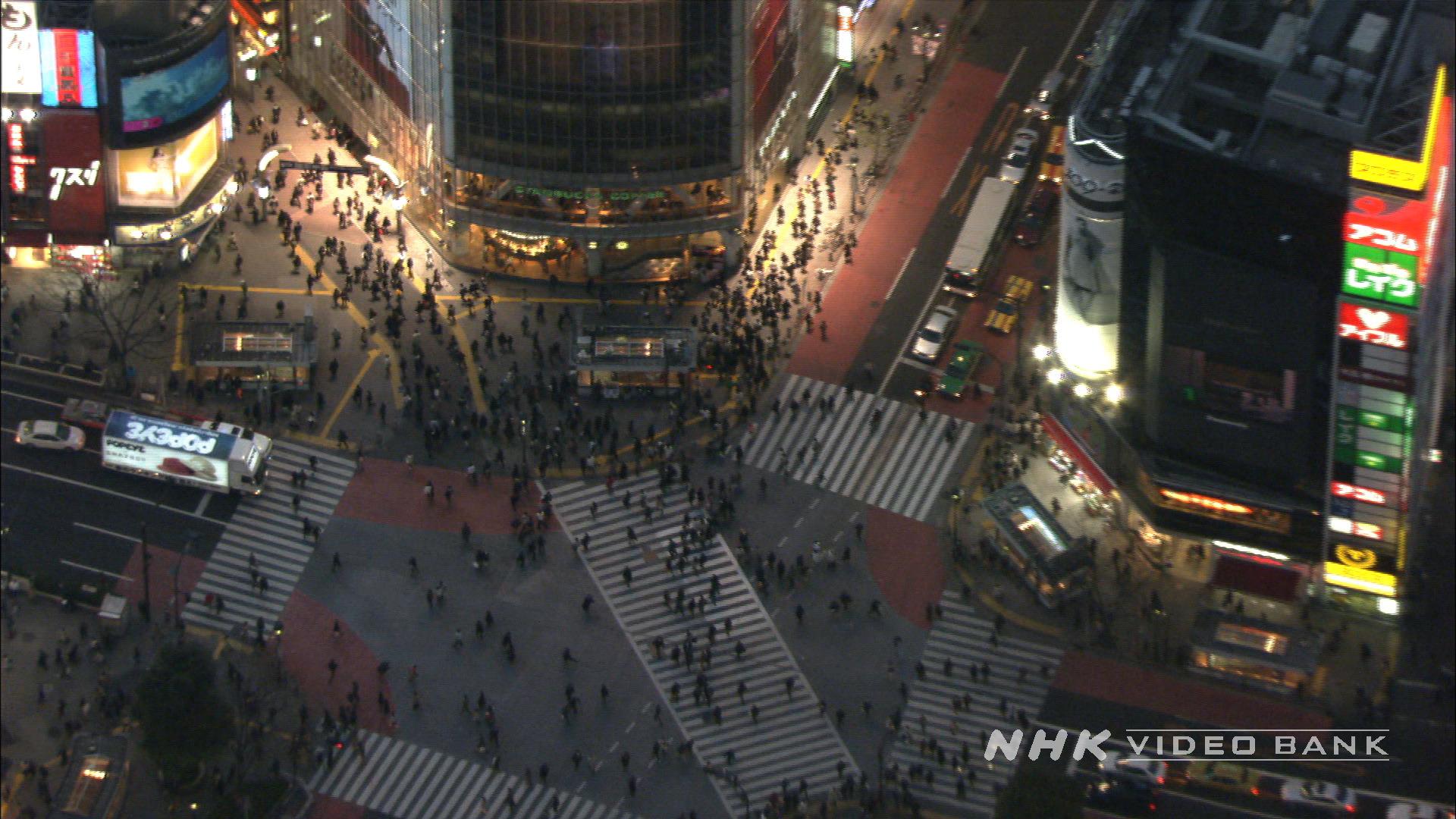 Aerial View of Tokyo III
