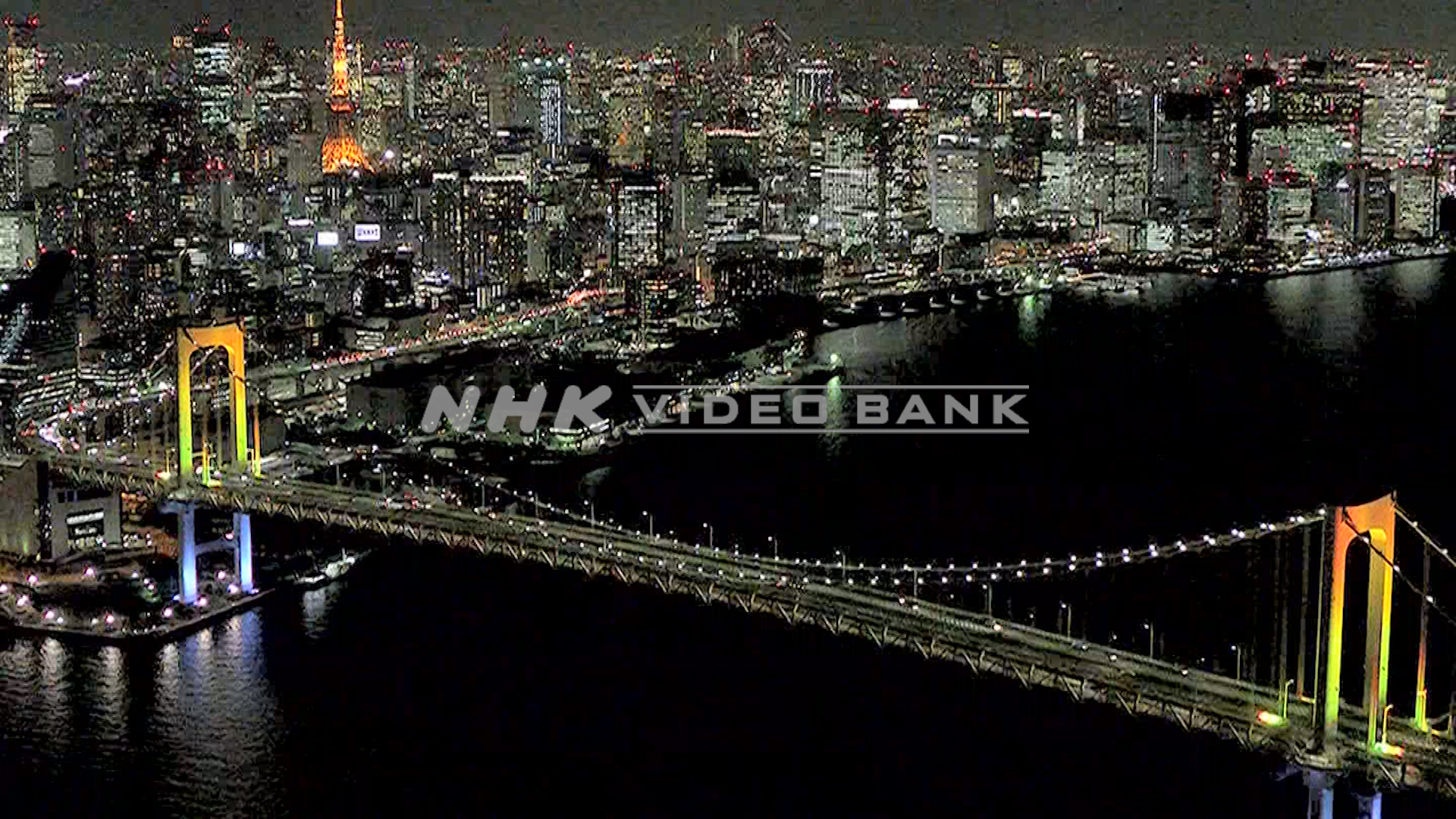 Nightscape of megacity Tokyo is shining.