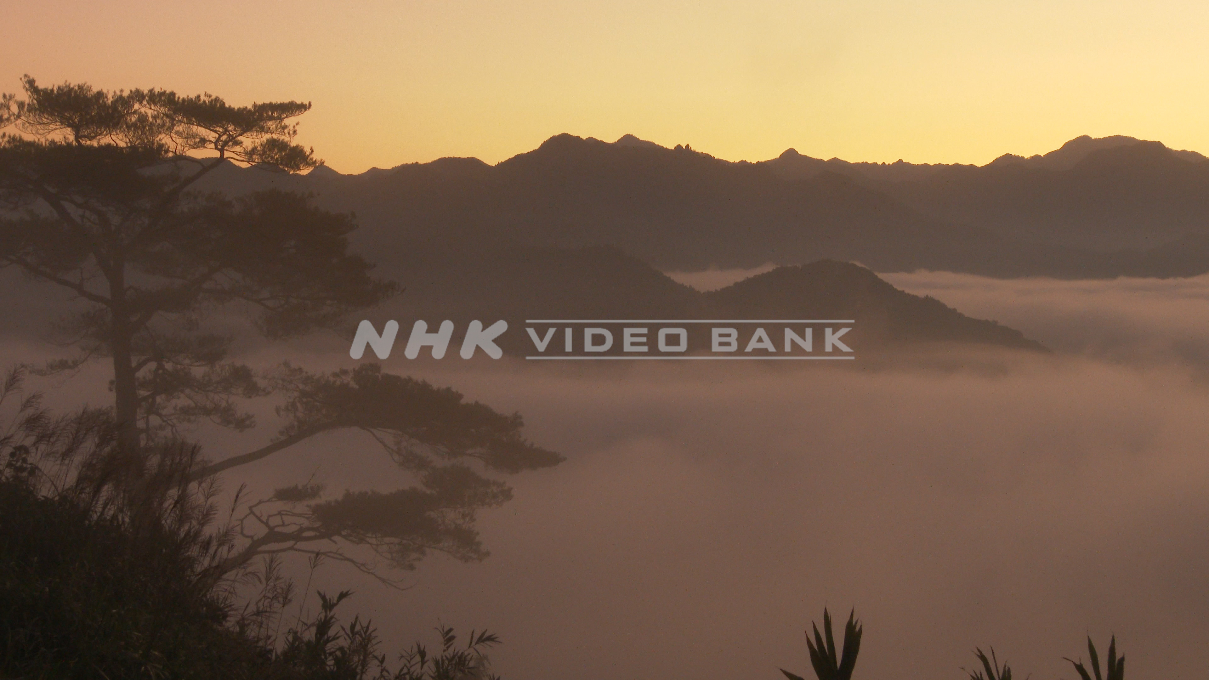 4K: Sea of clouds in Takachiho